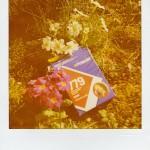 Polaroid 779 …